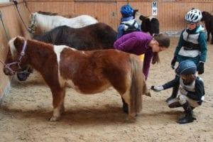 Kinder beim striegeln eines Ponys